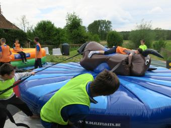 Trekrodeo stier Dijle Floats