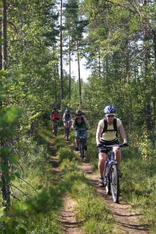 Sportdag Module Mountainbike te Oud-Heverlee